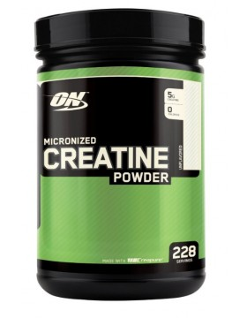 Optimum Nutrition Creatine Powder 1.2 kg.