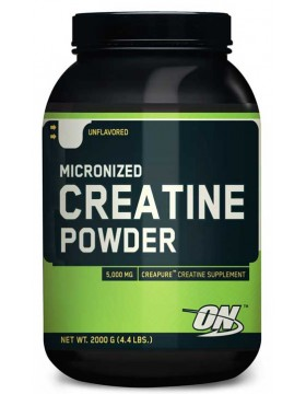 Фото Optimum Nutrition Creatine Powder 2 kg.