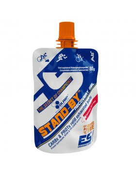 Фото Stand-By Recovery Gel (80 гр.)