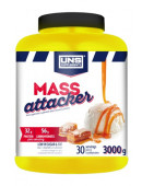 UNS Mass Attacker